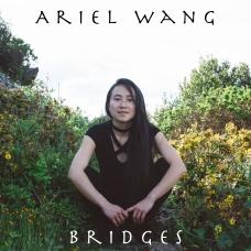 Bridges Front